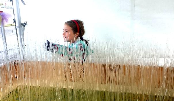 Sensory Interactive Garden at Beakerhead
